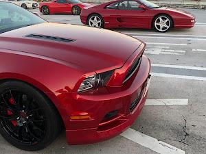 マスタング クーペ  2013V8 GTのカスタム事例画像 kazzさんの2019年01月02日15:05の投稿
