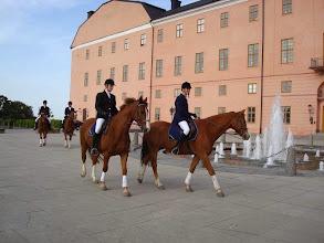 Photo: Akademistallets hästar och ryttare representerade UVFK, Uppsala Universitets ridinstitution och UARK vid promotionsmiddagen på Uppsala slott 30 maj 2008.