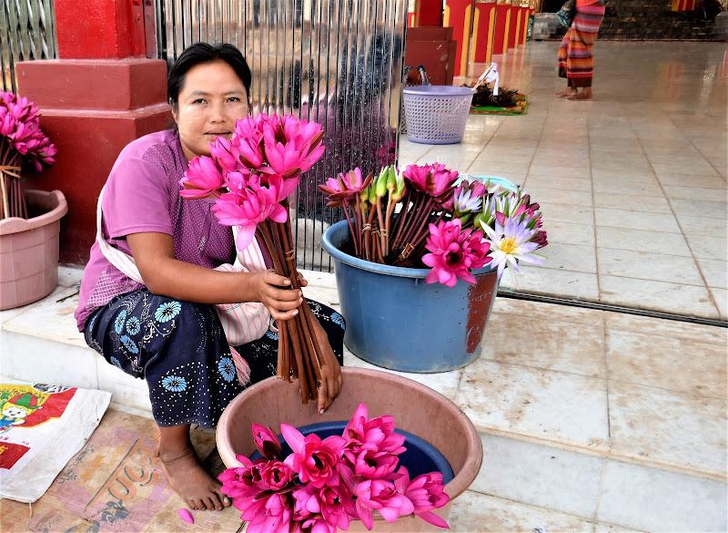 Offrire fior di loto. di Piera