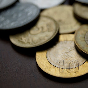 Indian Coins by Akshay Bhondokar - Artistic Objects Other Objects ( pwccoins )