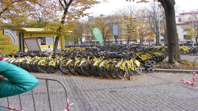 Bikes to take in Herastrau Park Bucharest