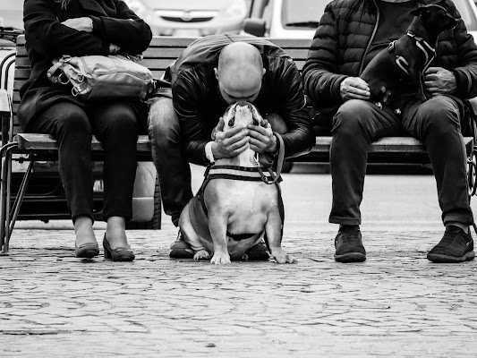 UN BACIO APPASSIONATO di Samphotography