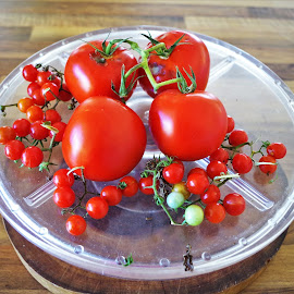 Still life tomato's  by Carolyn Lawson - Food & Drink Fruits & Vegetables
