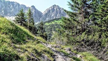 Photo: Blick auf das Geißalphorn vor dem Geißalpsee L-56 -  Wanderbeschreibung: https://pagewizz.com/gaisalpe-rubihorn-vordere-seealpe-oberstdorf/