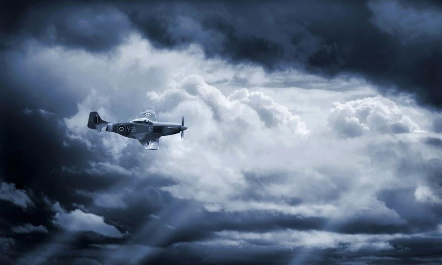 Lone Wolf by Jeff Stephenson - Transportation Airplanes ( aviation aircraft war warplane planes air force warbird military flight, pwcsunbeams-dq )