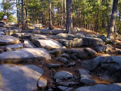 """""""Rocks"""