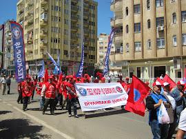 Diyarbakır Şube