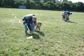 Photo: DogBasics Fun Day 2013 - Spoon Race Slalom and both John and Paul have lost their Markies!