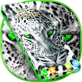 Live Wallpaper Tiger apk