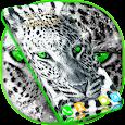 Live Wallpaper Tiger