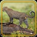 Leopard Wild HD LWP icon