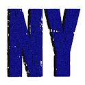 ESNY City Stream icon