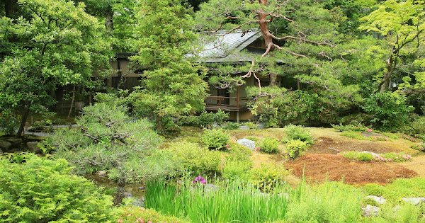 19. Murin-an (100 Japanese Garden in Kyoto I recommend)