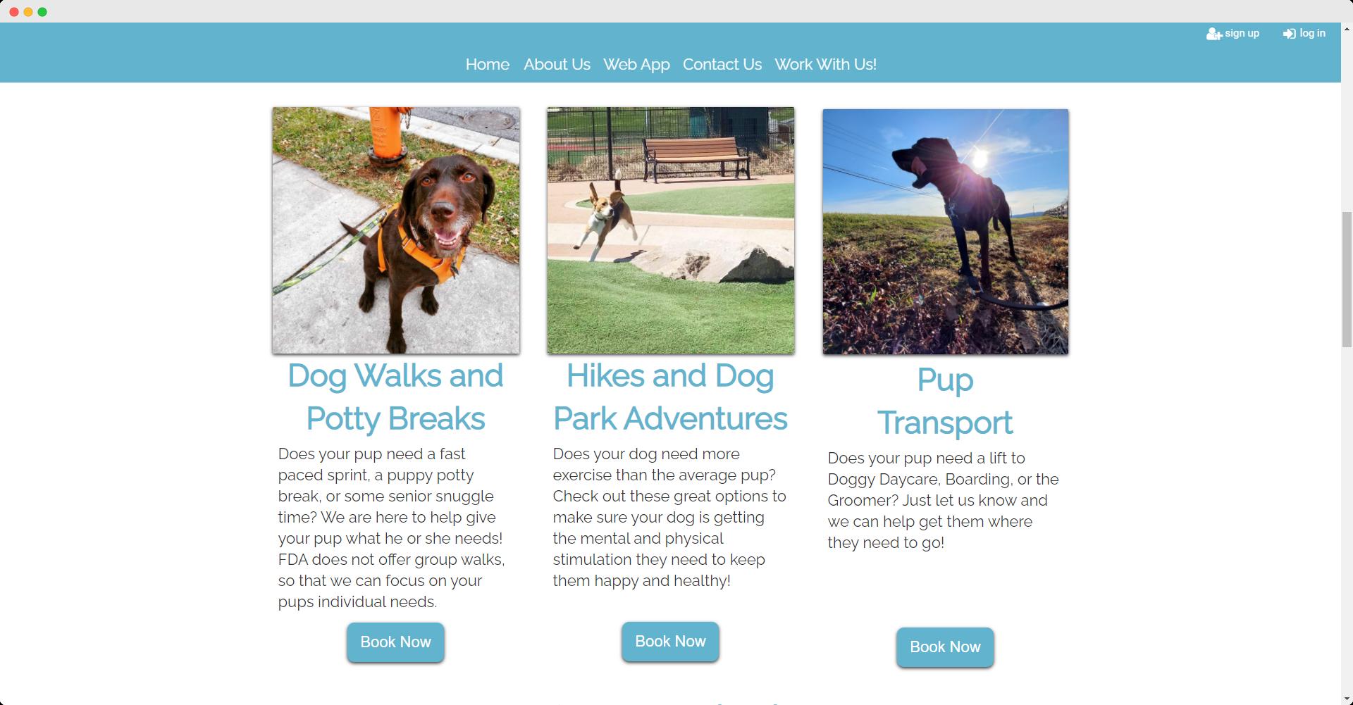 Four Dog Adventures