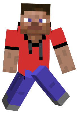 Just my normal Minecraft skin