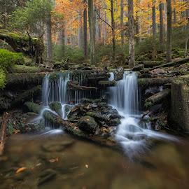 Autumn creek by Radek Lauko - Landscapes Waterscapes ( creek, water waterfall autumn creek, autumn, water )