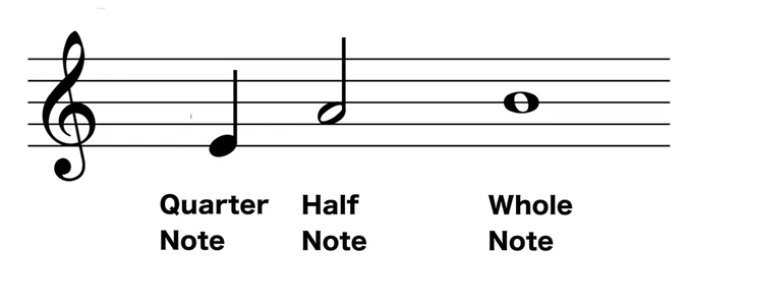 quarter note, half note, whole note