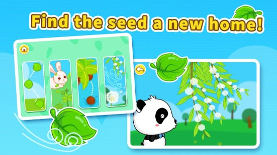 Baby Panda Magical Seeds - náhled