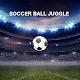 Soccer Ball Juggle (game)