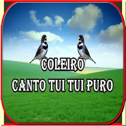 DE PARA CANTO TUI BAIXAR PURO COLEIRO TUI