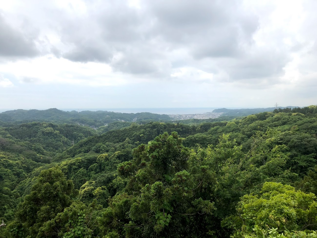 the top of Mt. Oohira view