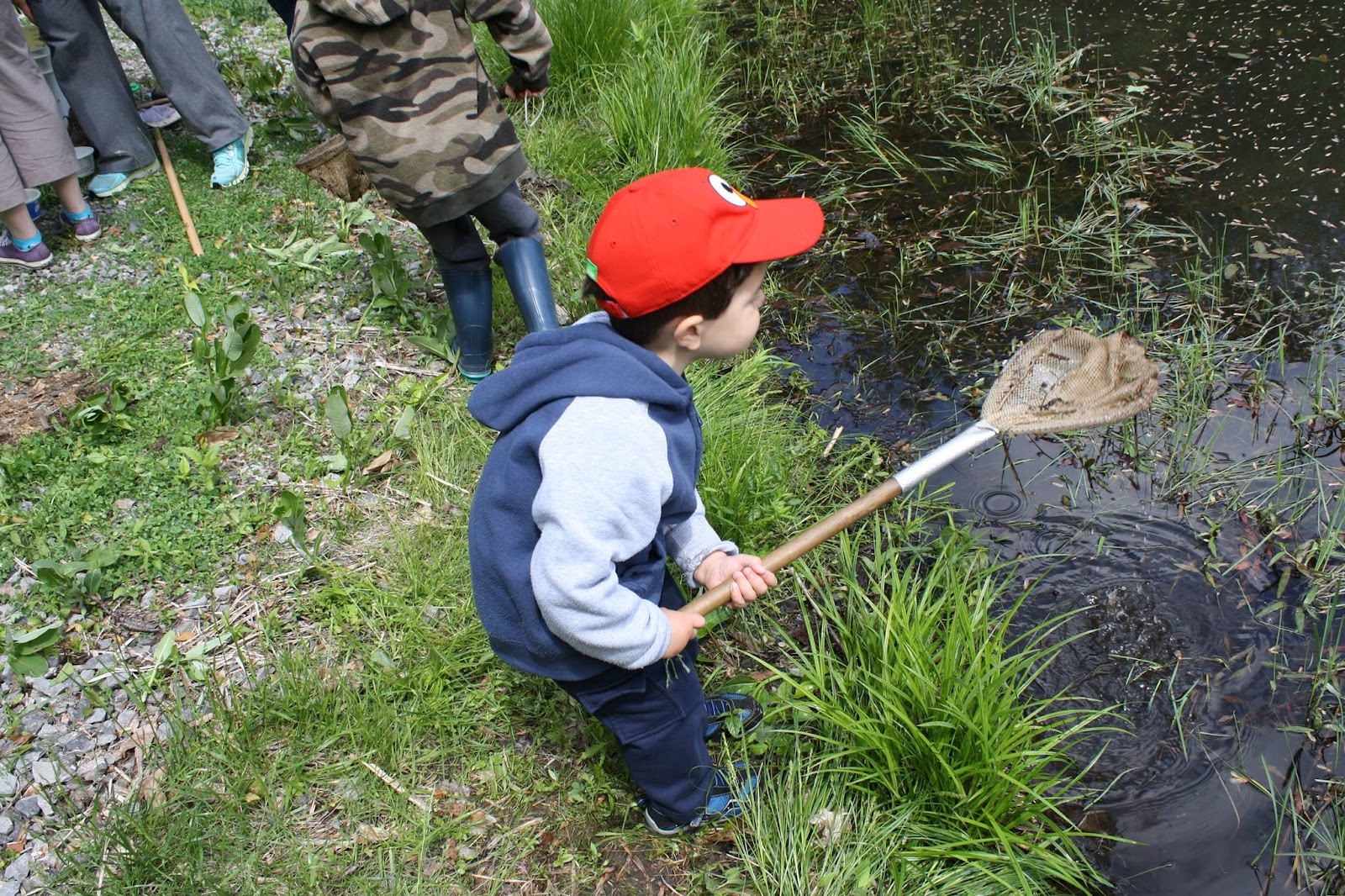 Pond Exploration Day at Oak Ridge Prairie