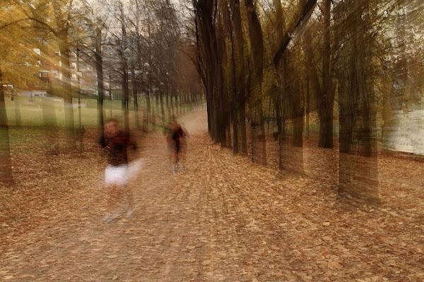 jogging autunnale di wilson6.1