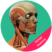 Human Anatomy - Body Parts