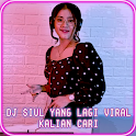 DJ SIUL Viral MP3 2020 icon