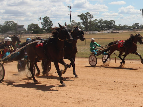 The Stacey Weidemann driven Royal Luck races to a John Dean Memorial win ahead of Its A Bitter Sweet (obscured) and Zippa Model (number one).