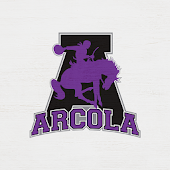 Arcola School District, IL