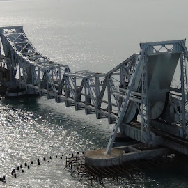 Pamban Bridge  by Leelamohan Anantharaju - Buildings & Architecture Bridges & Suspended Structures ( sea bridge, rameswaram, tourism, pamban, suspended bridges )