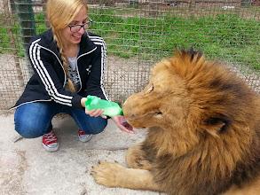 Photo: Zoológico de Luján