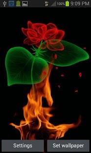 Fiery Rose Magic LWP - náhled