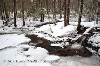 Photo: Confluence of a side stream with Whiteface Brook.