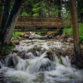 Gore Creek by Jim Hamel - Landscapes Travel ( water, creek, vail, colorado, trees, bridge )