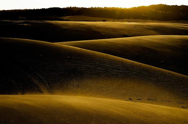 dune di Phuckoff