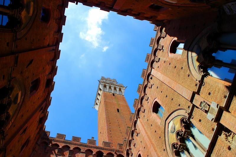 La torre di Palermoviva Photo