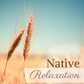 Native Relaxation - XX Tracks: Zen Music Harmony, Healing Zone, Wellness and Serenity, Body & Mind Relaxation, Tranquility for Body and Mind