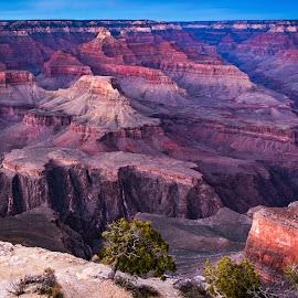 Grand Canyon A by Steven Aicinena - Landscapes Travel ( grand canyon national park, arizona, grand canyon,  )