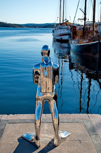 by Péter Mocsonoky - Artistic Objects Other Objects ( sculpture, oslo, chrome, dive )