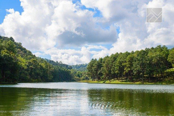 Reserva São José
