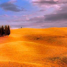 by Stanley P. - Landscapes Prairies, Meadows & Fields (  )