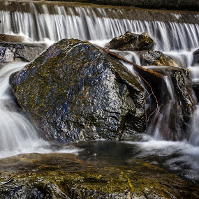 Time flowing by Fredrik A. Kaada - Landscapes Waterscapes ( water, tree, floating, shutterspeed, stone, lines, slow, rocks, golden, river )