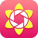 Falling flowers Movie icon