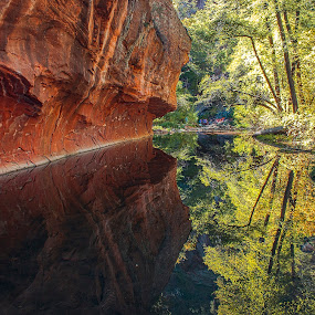 Oak Creek Reflection by Al Judge - Landscapes Waterscapes ( water, reflection, canyon wall, oak creek canyon, creek, fall, landscape, west fork, composite )