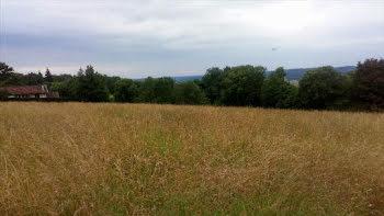 terrain à Villefranque (65)
