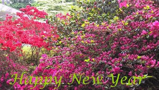 Happy New Year v2 - náhled