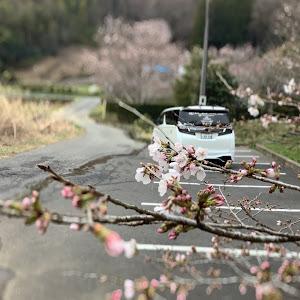 ヴェルファイア AGH30Wのカスタム事例画像 おかちゃん@ビビリーズ栃木さんの2021年03月22日17:59の投稿