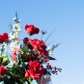 USA Patriotic flag and flowers by Gwyn Goodrow - Public Holidays July 4th ( flag, patriotic, stars, veterans day, memorial day, funeral, roses, service, july 4th, flowers, stripes, tombstone display, military,  )